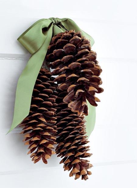 giant pine cones