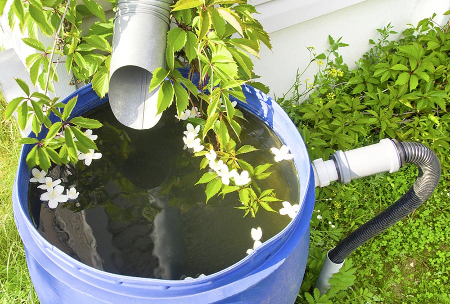 Rain spout to a barrel for water conservation