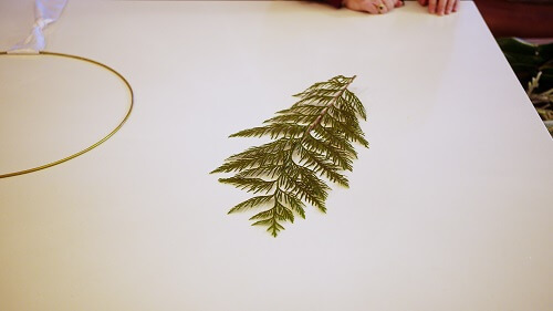 Single tree branch