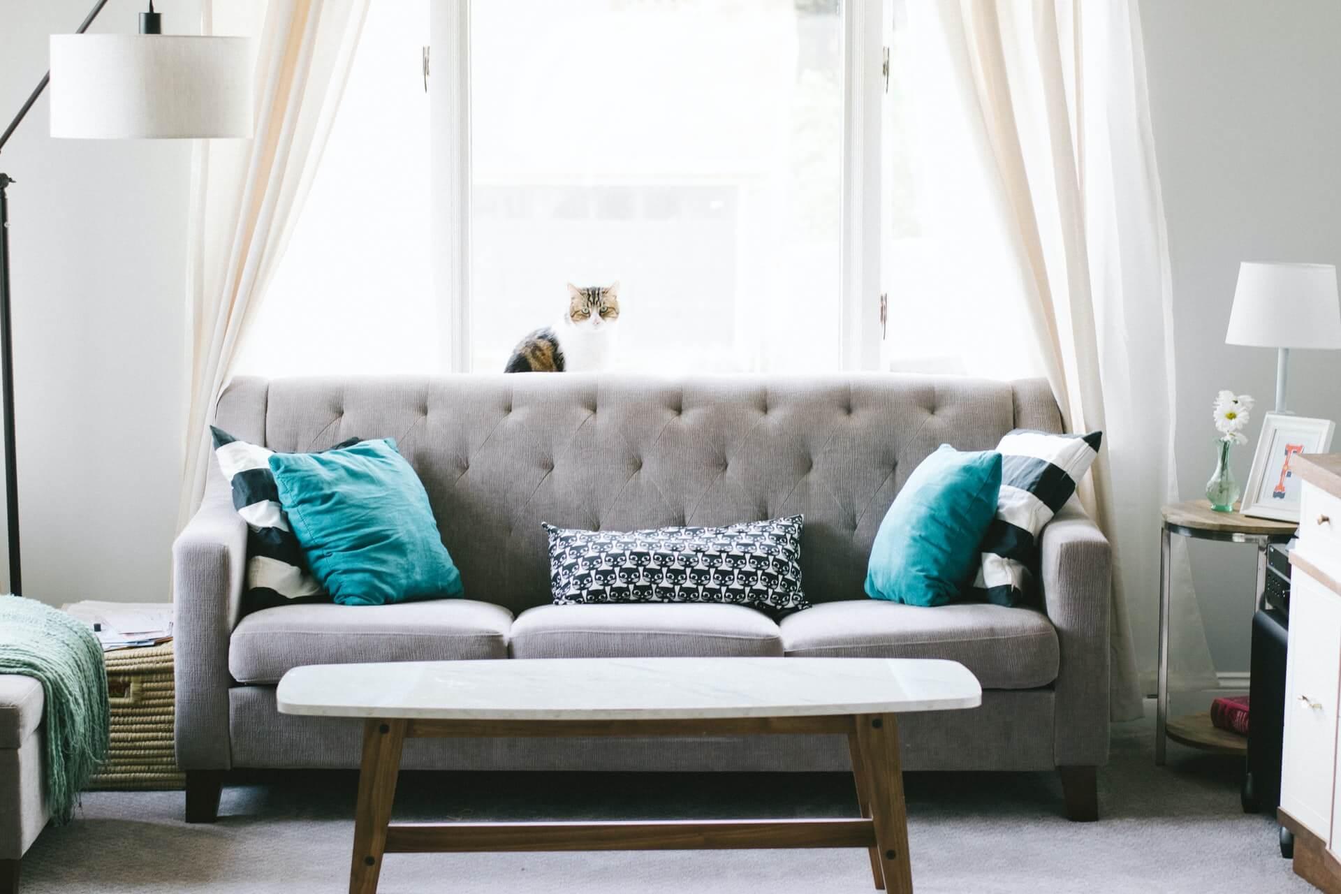 Teal pillows arranged on a grey sofa
